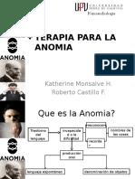 Terapia Para La Anomia (1)