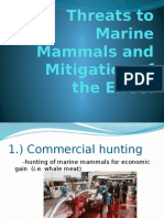 Threats to Marine Mammals