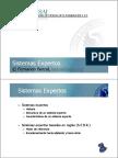 Sistemas Expertos 1.pdf