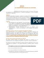 NIA 210 Resumen ACUERDO DE LOS TÉRMINOS DEL ENCARGO.pdf