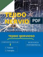 SISTEMA NERVIOSO - LCR.pptx