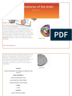 Hemispheres of the Brain-1
