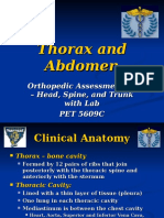 FIU - Thorax and Abdomen