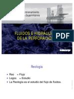 20 Fluidos e Hidraulica de Perforación...79.pdf