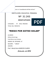 Proyecto de Ciencias Riego Por Goteo Solar