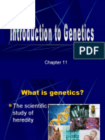 Intro to Genetics (2003)