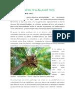 Plantas en Peligro