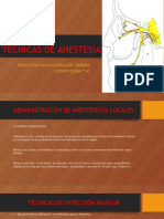Técnicas de Anestesia