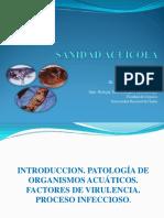 Sanidad Acuicola i 1ra Semana