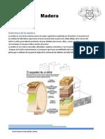 Madera PDF