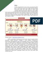 resume pervcobaan grifitf.docx