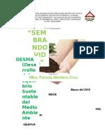 colectivo  DESMA.docx