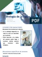 Biologia de la radiación