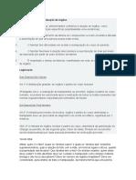 Argumentos contra a doação de órgãos.docx