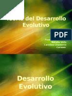 4- Teoría Del Desarrollo Evolutivo