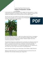 Dragon Fruit Production