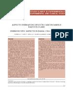 Aspecte Dermatoscopice În Carcinoamele