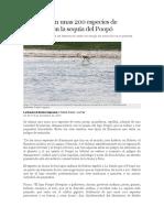 Desaparecen Unas 200 Especies de Animales Con La Sequía Del Poopó