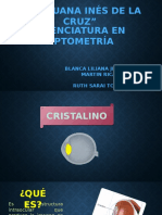 Expo Cristalino