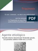 Triquinosis I