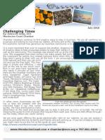 Chamber Newsletter July 2010