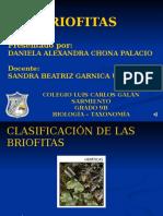 DIAPOSITIVAS BRIOFITAS