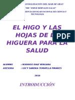 EL HIGO PROYECTO 1 (1) (1).docx