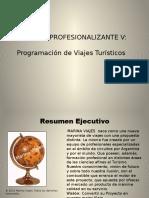 Practica Profesionalizante V