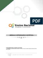estética curso.pdf