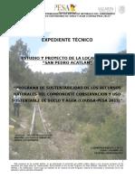 Exp.Tec. San Pedro Acatlán.docx
