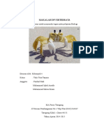 MAKALAH INVERTEBRATA (Autosaved).docxq.docx