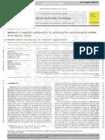 Magnetita Artículo de Preparación Vía Electrosíntesis