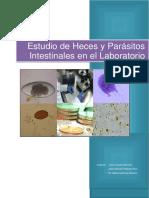 Estudio de Heces y Parc3a1sitos Intestinales en El Laboratorio