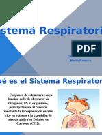 Presentación1 Respiracion