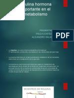 Insulina Hormona Importante en El Metabolismo