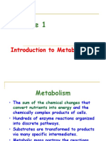Lecture 1 Intro 2 Metabolism
