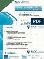 INSPECCION_RECUBRIMIENTOS_INDUSTRIALES_I.pdf