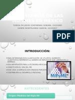Importancia de Las MiPyMes en México