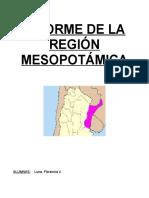 Informe de La Región Mesopotámica (1)