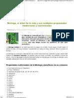 Moringa, El Árbol de La Vida y Sus Múltiples Propiedades Medicinales y