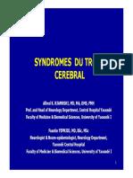 Syndromes Du Tronc Cerebral_y