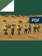 Medios Incendios Forestales