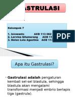 Ppt Gastrulasi Kel 7