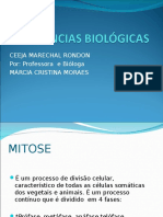 AULA 1º CÉLULAS E ORGANELAS.ppt