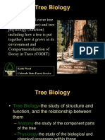 cmvfs-TreeBiology-2014.pdf