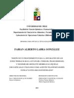 labra_fa.pdf