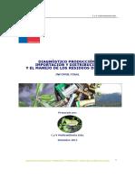 articles-55497_Diagnostico_Pilas_2011.pdf