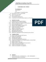 PERFIL CHINCHA BAJA.docx