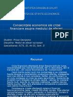 Consecinţele Economice Ale Crizei Financiare Asupra Mediului de Afaceri