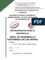 nivel de desarrollo sostenible en las mypes.docx